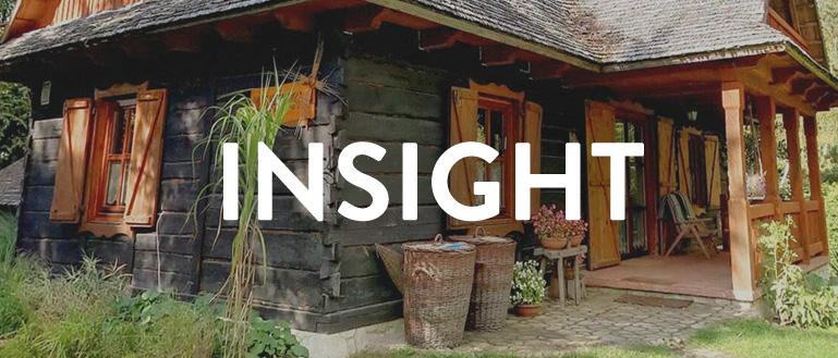 Insight 10